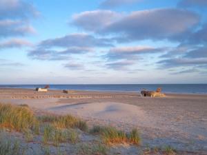 Blavand Beach