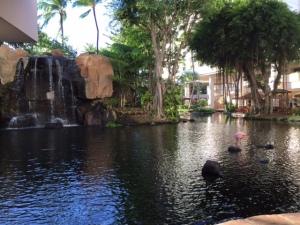 Hawaii 08