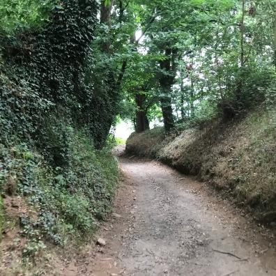 Trail 2 - Blog 5