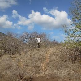 komodo Island 6