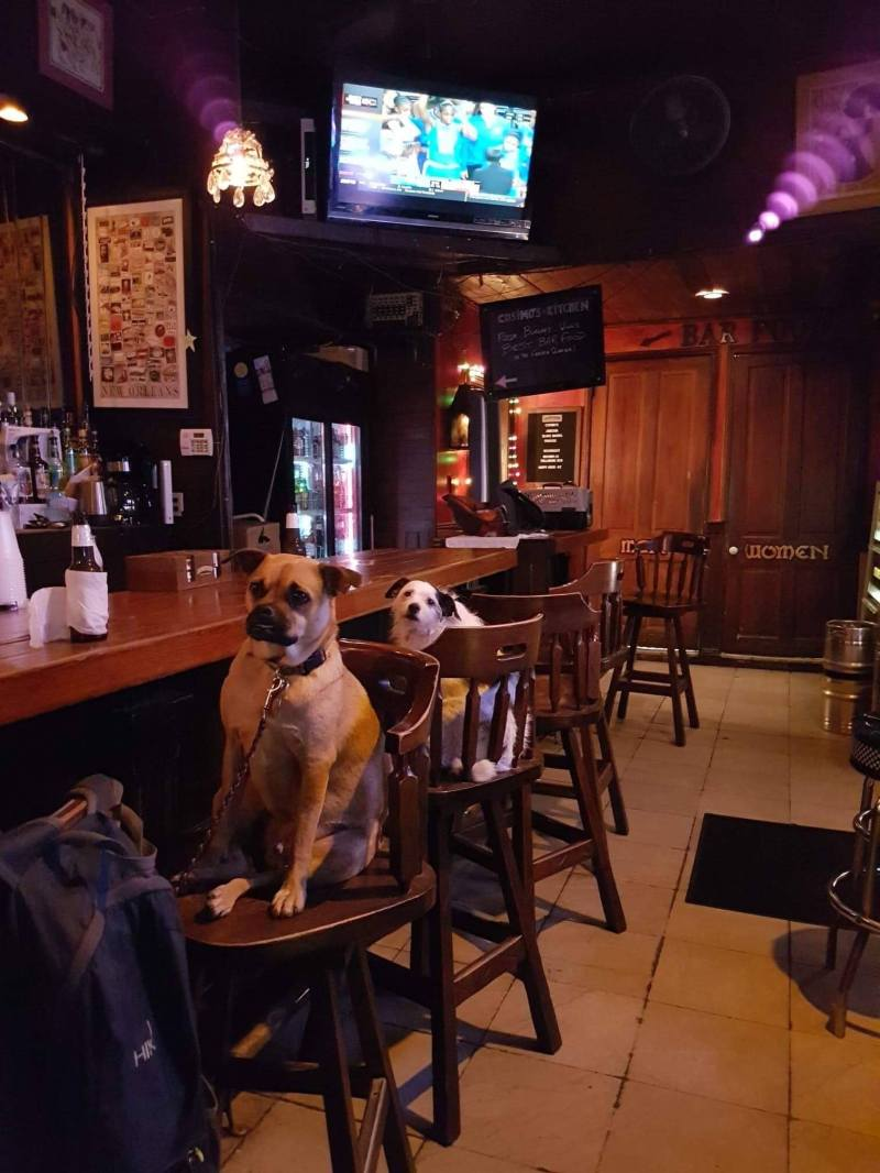 Went to our local bar crazy who they let in