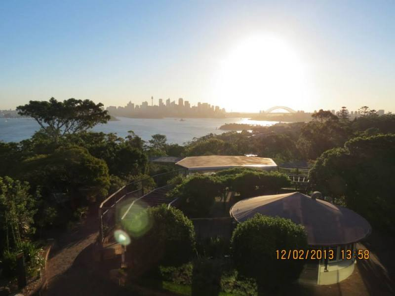 Sydney Zoo at Sunset 2